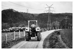 Bauer Gurke (Revierfotograf) Tags: street traktor landwirtschaft gurke bauer farmer ruhrgebiet