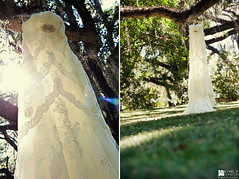 Sara & Matthew | Wedding Dress (Michael B. Johnston) Tags: wedding tree field grass sunshine lens oak nikon dress florida live marriage plantation fl backlit gown tallahassee 70200mm d700 welaunee