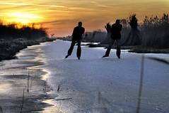 Weerribben schaatsen 2012