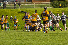 Bangor RFC V Dundalk RFC Irish Junior Cup Final 31st January 2015  clearing out (Canon John's 7D (Wow! 3,000,000+ views, Thanks)) Tags: ireland storm jump all power attack bangor compassion gilbert precision pace block roger care comfort leap penalty lineout ulster physio skill treatment defend overwhelmed dropkick overwhelm  irishrugby codown time ulsterrugby maiden irfu hard bangorcodown northern ireland half victory co 0 second 19 rugby final fiddle hitting corbett grassroots bangorrfc title irishjuniorcup dundalkrfc knockonie louth dundalk outpowered irishjuniorcupfinal chambersparkportadown bangorrfcvdundalkrfcirishjuniorcupfinal31january2015