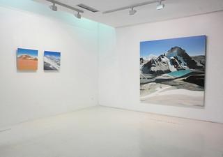 Julio Sarramián - Naturaleza hiper-transfronteriza (obra en sala - CEART, Fuenlabrada)