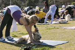 """Yoga GWR-CD-012515 (366) • <a style=""""font-size:0.8em;"""" href=""""http://www.flickr.com/photos/25952605@N03/16374498611/"""" target=""""_blank"""">View on Flickr</a>"""