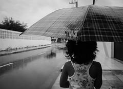 November rain (vianalucao) Tags: street city b cidade brazil urban blackandwhite bw cloud white mist black nature water rain gua branco brasil clouds day afternoon cloudy w chuva pb dia preto rainy e nuvens p urbano rua neblina nuvem pretoebranco aracaju chuvoso sergipe