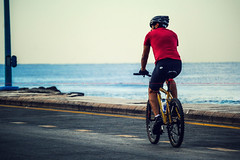 BicycleMan  (dr.7sn Photography) Tags: morning blue red sea sky man bike bicycle race vintage cool steel tshirt class retro riding cycle schwinn jeddah  brooks fiets     ywllow    cornich      bicycleman                            icfahrrad