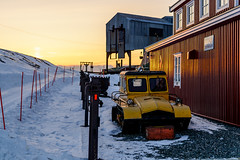 Old and Yellow (Benocrash) Tags: snow norway pole svalbard arctic neige polar arctique longyearbyen northernmost polaire norvge d7100