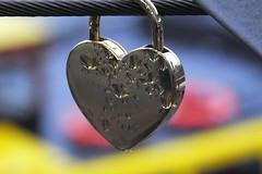 Heartly (Elbmaedchen) Tags: raindrops herz regenwetter regentropfen lovelocks liebesschlsser