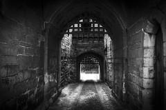 Warwick Castle (Den Gilbert) Tags: england bw castles monochrome ancient historic warwick portcullis warwickcastle