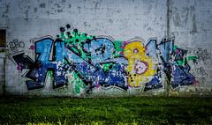 Harsh D30 (Nedeism) Tags: graffiti neworleans nola dts d30 harsh fs abels okies neworleansgraffiti