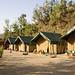 Shaiolin Gurukul Tents