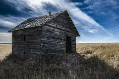 Sunlit Saturation (Explored) (Stubble Jumper Photography) Tags: house abandoned rural bluesky alberta lensflare prairie dilapidated