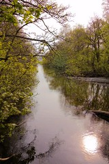 Scotland Day Three (Crazyideas95) Tags: trip bridge water creek scotland highlands stream walk sunny inlet loch lomond luss