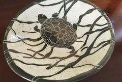 Swimming turtle (mason_cyndi) Tags: pots photostream