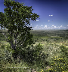 (Chains of Pace) Tags: oklahoma landscape view perspective prairie panhandle