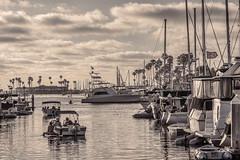 Marina Sunset (Y*Y Photography) Tags: bw white black sepia marina boats coastal