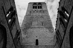 Old Church Damme (gerdvanmechelen) Tags: leica church belgium 35 kerk damme elmarit
