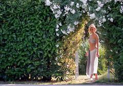 bed and breakfast il Casale (bed and breakfast il Casale   www.bb-ilcasale.it) Tags: summer hotel holidays estate rimini piscina solarium bb vacanza riccione adriatico cattolica misano prenota