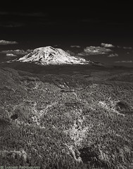 Mt Adams (mjardeen) Tags: road trees portrait blackandwhite bw white mountain black nature clouds contrast landscape ir washington conversion outdoor g sony telephoto infrared wa converted fe mtadams tones 70200mm oss 720nm 4 lifepixel landscapesshotinportraitformat sonyfe70200mm4goss