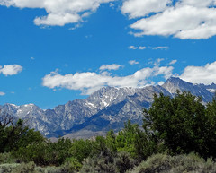 Sierra Nevada Sky, June Lake, CA 6-2016.jpg (inkknife_2000 (6.5 million views +)) Tags: california usa snow mountains forest landscapes skyandclouds thunderhead easternsierranevada snowonmountains carsonmountain dgrahamphoto