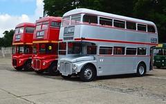 SRM7 ALD871B (PD3.) Tags: bus london buses museum vintage silver coach transport 7 surrey trust routemaster preserved preservation psv pcv srm brooklands rm 2016 1871 aec ald lbpt ald871b rm1871 srm7 871b cobhaml
