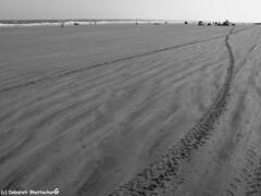 Mandarmani, West Bengal, India (Debarati Bhattacharjee) Tags: mandarmani india westbengal purbamedinipur beach seashore bayofbengal sea ocean landscape nature