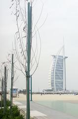 Jumeirah Open Beach (Denise P.S.) Tags: beach hotel dubai uae burjalarab jumeirah 2016