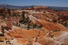 Bryce Canyon/Queen's Garden Trail (Dagonite) Tags: utah nationalpark brycecanyon queensgardentrail carlzeiss2470 sonya57