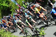 An Ras 2013 -Stage 7, Carlow to Naas (sjrowe53) Tags: county ireland cycling racing pro wexford semipro kildare naas carlow seanrowe cycleracing anras ras2013250513