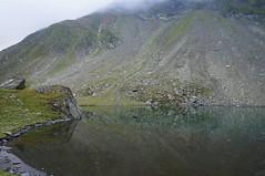 Dimineața la lacul Avrig