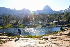 crest_trail_84 (StephenWilliDesigns) Tags: mountains hiking backpacking wildflowers wyoming tetons grandtetonnationalpark tetoncresttrail