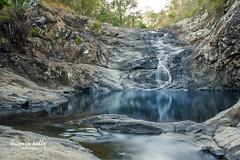 Fall Reflections (Kelly Hunter) Tags: swimming swim waterfall bush australia qld queensland tamborinemountain rockpool goldcoast cedarcreekfalls ndfilter hinterland mttamborine hiddengem nd8 greenbehindthegold