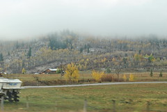 DSC_0424 (toni.radcliffe) Tags: fall hole country jackson wyoming jacksonhole wy jacksonholewy jacksonholewyoming