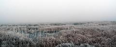 Laguna de la Nava (Francisco J. Gmez) Tags: niebla palencia lagunadelanava fuentesdenava