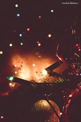 Natale (Ileana Dominici) Tags: life light shadow red hot color love vintage freedom colore time ombra ombre silence memory dreams luci pdf festa natale riflessi calore ritratto amore notte luce vacanza carezza leggero leggere riflesso sogni coccole leggerezza caldo ricordo credere profonditdicampo natalizio lucesoffusa rintocchi