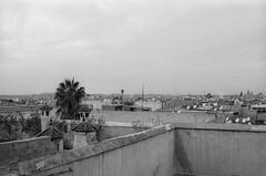Scan-131230-0049.jpg (mathendrix) Tags: africa analog blackwhite marrakech roll2 nikonf3 marroco fujineopan400 homedeveloping 2013 nikoncoolscan5000ed
