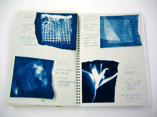 "visual diary – cyanotype experiments • <a style=""font-size:0.8em;"" href=""http://www.flickr.com/photos/61714195@N00/11736635355/"" target=""_blank"">View on Flickr</a>"