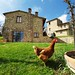 villa-holiday-tuscany