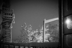 dreamland (omoo) Tags: newyorkcity bw snow snowy westvillage dreaming fireescape snowing dreamland tenement greenwichvillage snowcovered fireescapes whitewhite tosleep heavysnow upallnight perchancetodream bwphotograph leaningoutawindow dreamingofsnow winterdreamland