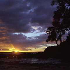(Wendi Andrews) Tags: ocean sunset sea film beach island hawaii maui hasselblad palmtrees secretcove makenacove