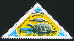 Mongolia 0445 m (roook76) Tags: old wild nature animal vintage ancient message slow mail turtle reptile antique wildlife postcard tortoise shell historic retro stamp mongolia cover seal envelope letter environment shield aged aquatic 1977 crawling postage postmark philately carapace vision:mountain=0527 vision:outdoor=0955