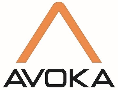 Avoka_hi_res_FS2014
