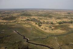 20121017_maun_0069 (sraanasol) Tags: afrika botswana rundflug okawango luftaufname