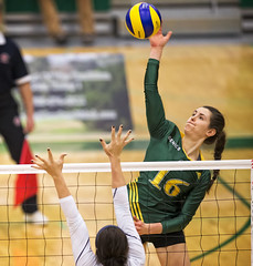 A77V9162 (Don Voaklander) Tags: woman man male men college sports sport female community women university edmonton bears varsity alberta volleyball pandas golden centre university mens voaklander saville donvoaklander