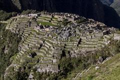 2014_Perou-2572 (benoitmcote) Tags: peru southamerica machu picchu inca cuzco landscape cusco andes machupicchu paysage sacredvalley cordillera pérou amériquedusud cordillère valléesacrée voyageen100photos