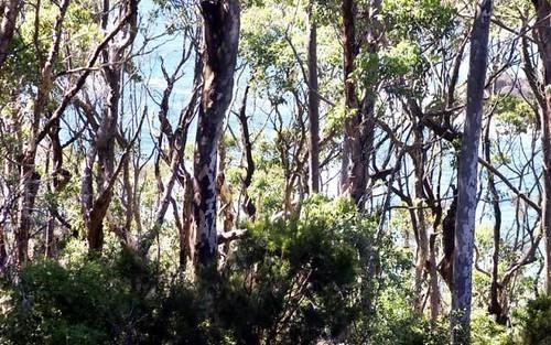 59 Fairview Drive, Lilli Pilli NSW