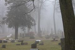 IMG_2790 (qhenthusiast) Tags: history cemetery fog memories eerie shroud oakwood tombstones untold