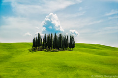 Val D'orcia, Tuscany, Italy (evsya) Tags: trees green nature field contrast outside amazing peace view landmark minimal tuscany itali pease outstanding silen