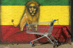 Shopping trolley and lion (Jan van der Wolf) Tags: street shadow wall painting flag lion shoppingtrolley schaduw wallpainting muur vlag leeuw winkelwagen winkelwagentje heesterveld map15191ve