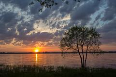 Rest in peace (Danny Lamontagne) Tags: sunset sky orange sun tree water canon river soleil eau coucher ciel nuit arbre fleuve