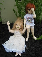 IMG_2179 (abrowin) Tags: ball dolls victoria vic bjd abjd jointed rowindoll