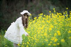 DSC_9472 (nana_tsuki) Tags: